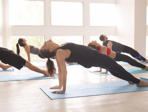 Plank inverso