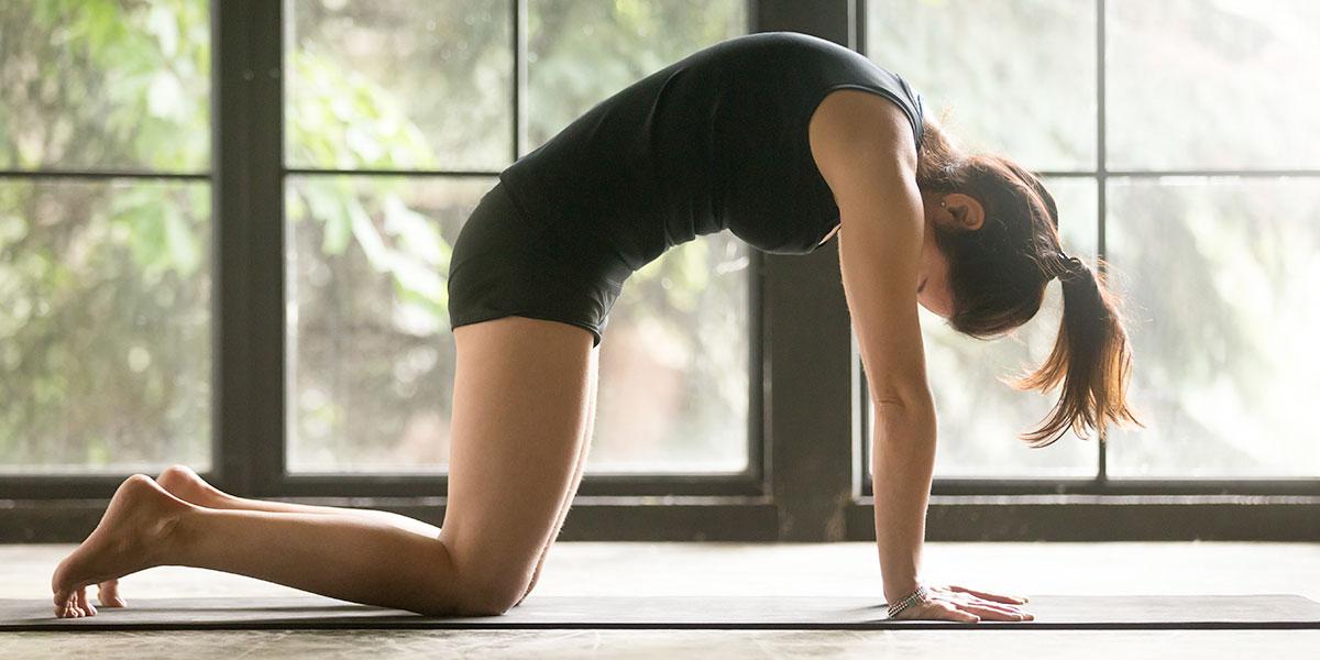 kundalini yoga, posizione del gatto