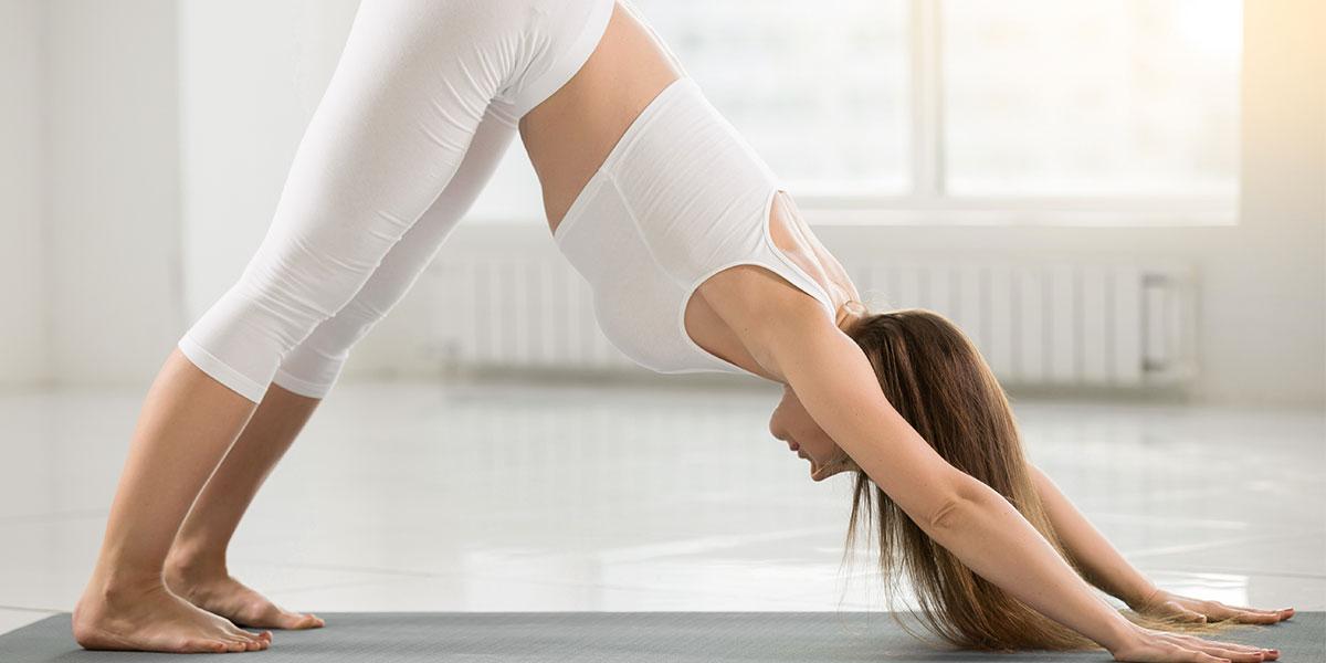 hatha yoga, cane a testa in giù